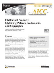 Intellectual Property: Obtaining Patents, Trademarks, and Copyrights