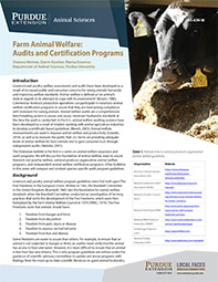 Farm Animal Welfare: Audits and Certification Programs