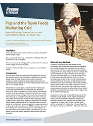 Market Pigs with Tyson Foods Marketing Grid