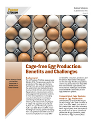 Cage-free Egg Production:  Benefits and Challenges