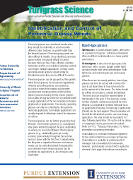 Identification and Control of Perennial Grassy Weeds