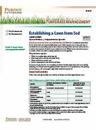 Turfgrass Management: Establishing a Lawn From Sod