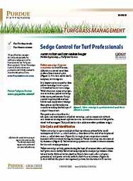 Turfgrass Management: Sedge Control for Turf Professionals