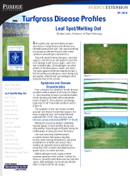 Turfgrass Disease Profiles: Leaf Spot/Melting Out