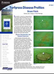 Turfgrass Disease Profiles: Brown Patch