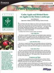Fruit Diseases: Cedar Apple and Related Rusts on Apples in the Home Landscape