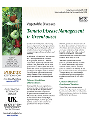 Vegetable Diseases: Tomato Disease Management in Greenhouses