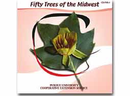 Fifty Trees of the Midwest CD (10/pkg)