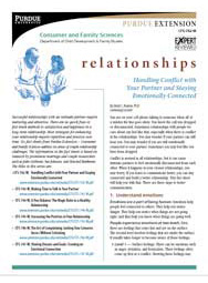 Handling Conflict with Your Partner and Staying Emotionally Connected (Relationships series)