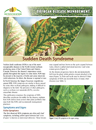 Soybean Disease Management: Sudden Death Syndrome