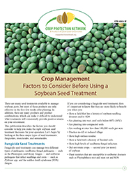 Crop Management: Factors to Consider Before Using a Soybean Seed Treatment