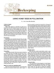 Using Honey Bees in Pollination