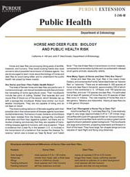 Horse and Deer Flies: Biology and Public Health Risk