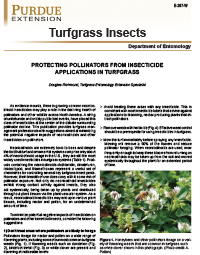 Turfgrass Insects: Protecting Pollinators from Insecticide Applications in Turfgrass