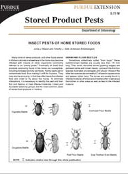 Insect Pests of Home Stored Foods