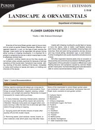 Flower Garden Pests