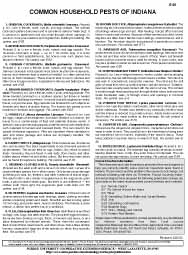Common Household Pests of Indiana