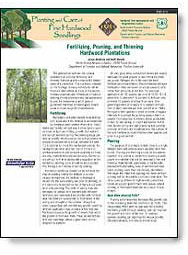 Fertilizing, Pruning, and Thinning Hardwood Plantations