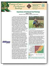 Importance of Hardwood Tree Planting