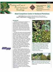 Weed Competition Control in Hardwood Plantations