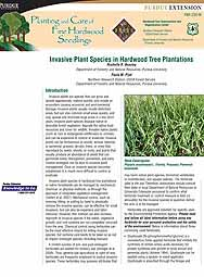 Invasive Plant Species in Hardwood Tree Plantations