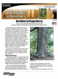 Hackberry/Sugarberry