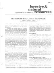 How to Identify Some Common Indiana Woods