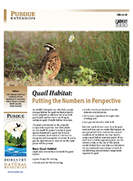 Quail Habitat: Putting the Numbers in Perspective