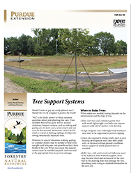 Tree Support Systems
