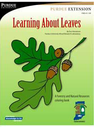 Learning About Leaves: A Forestry and Natural Resources Coloring Book