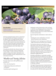 Grape Varieties for Indiana