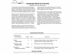 Landscape Plants for Acid Soils