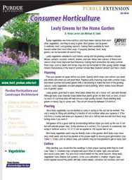 Leafy Greens for the Home Garden