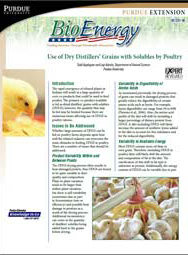 Use of Dry Distillers' Grains with Solubles by Poultry