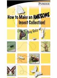 Awesome Insects (iOS App)