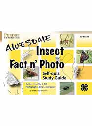 Awesome Insect Fact n' Photo Self-quiz Study Guide