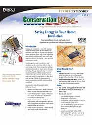 Saving Energy in Your Home: Insulation