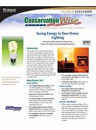 Saving Energy in Your Home: Lighting