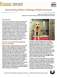 Kenneled Dog Welfare: Challenges of Field Assessment