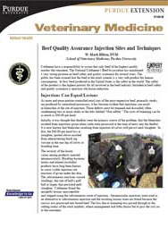 Beef Quality Assurance Injection Sites and Techniques