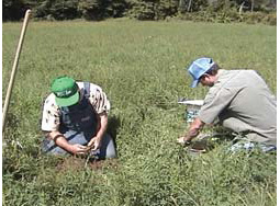 On-Farm Soil Monitoring for Water Resource Protection