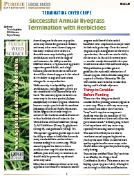 Terminating Cover Crops: Successful Annual Ryegrass Termination with Herbicides