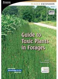 Guide to Toxic Plants in Forages