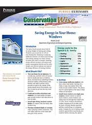 Saving Energy in Your Home: Windows